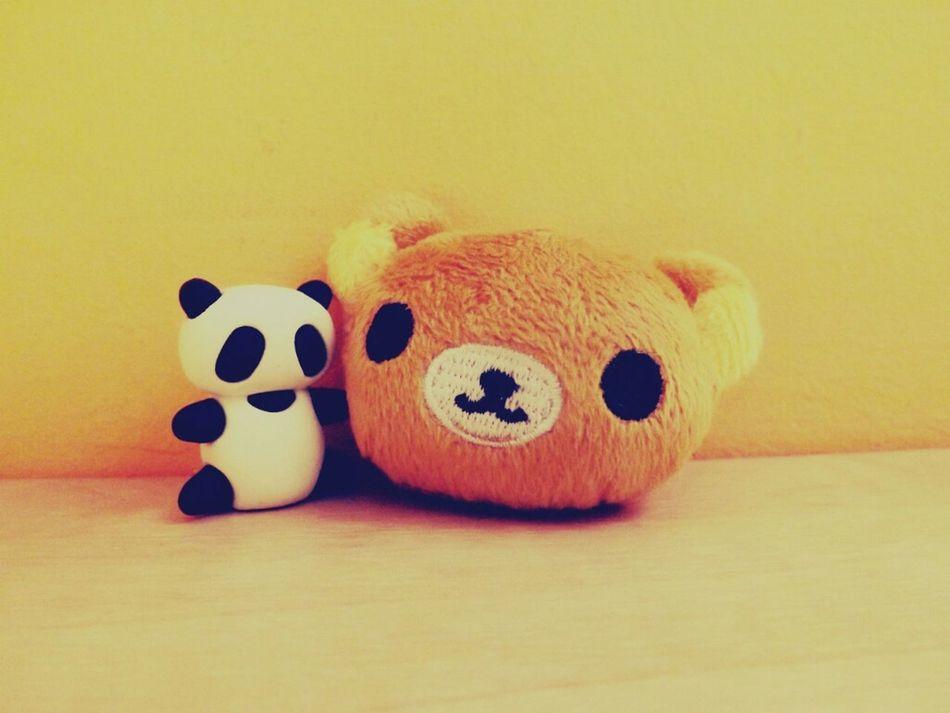 Beautiful stock photos of teddy bear, Floor, Fluffy Toy, Front View, Hardwood Floor