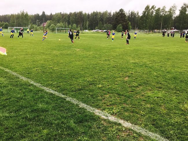 Grass Sport Green Color Tree Competition Large Group Of People Soccer Team Sport Competitive Sport Teamwork Sports Team Togetherness Playing Field Leisure Activity Soccer Field Sports Clothing Real People Growth Field Playing