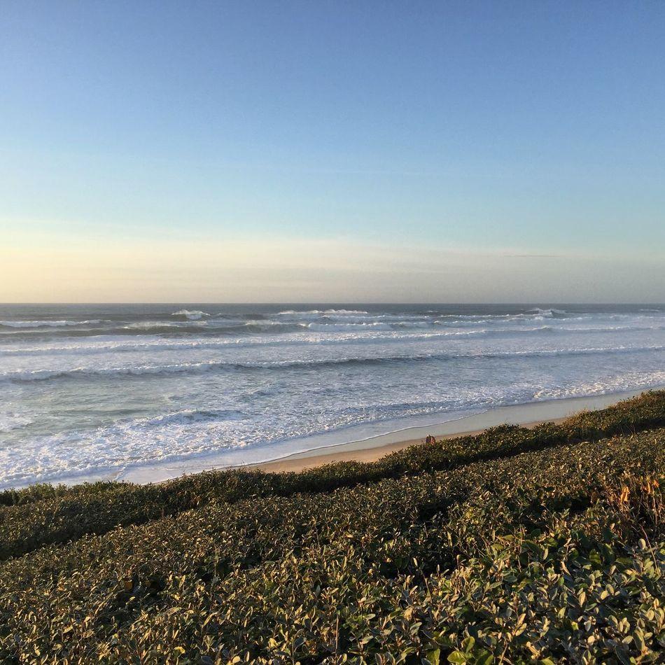 Landscape Paysage France Aquitaine Les Landes Biscarrosse Beach Plage Waves Vague Sea Mer
