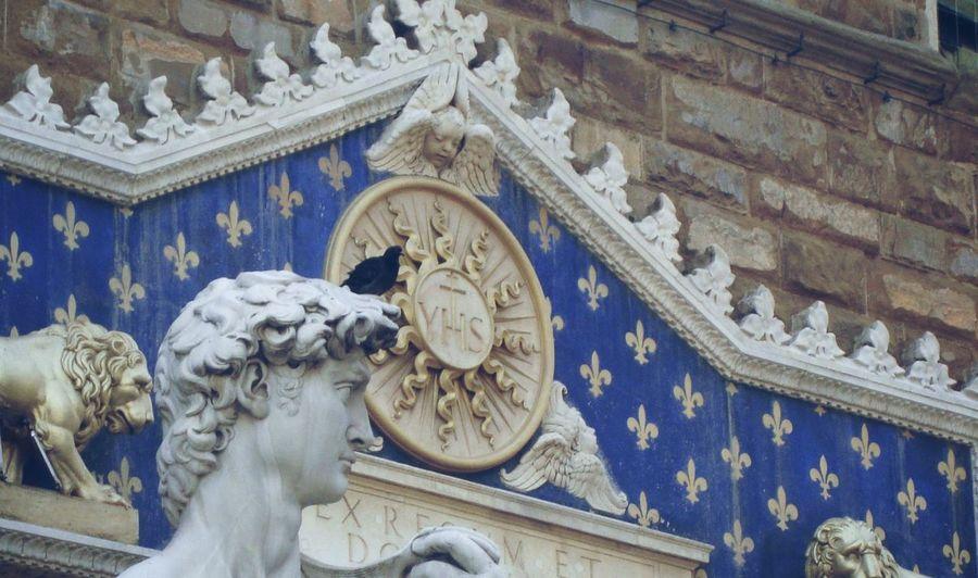 Architecture Blue Building Exterior Day Florence No People Piazza Della Signoria Pigeon Replica  Statue Of David