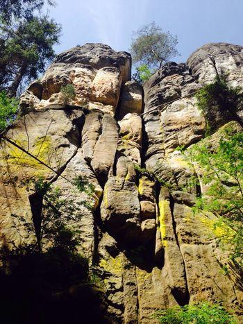 Nature Czech Eyem Nature Lovers  Czechy Walking Green Adršpach Skały Adršpachské Skály Adršpašské Skály Stone City Stones Stone EyeEm Nature Lover EyeEm Gallery