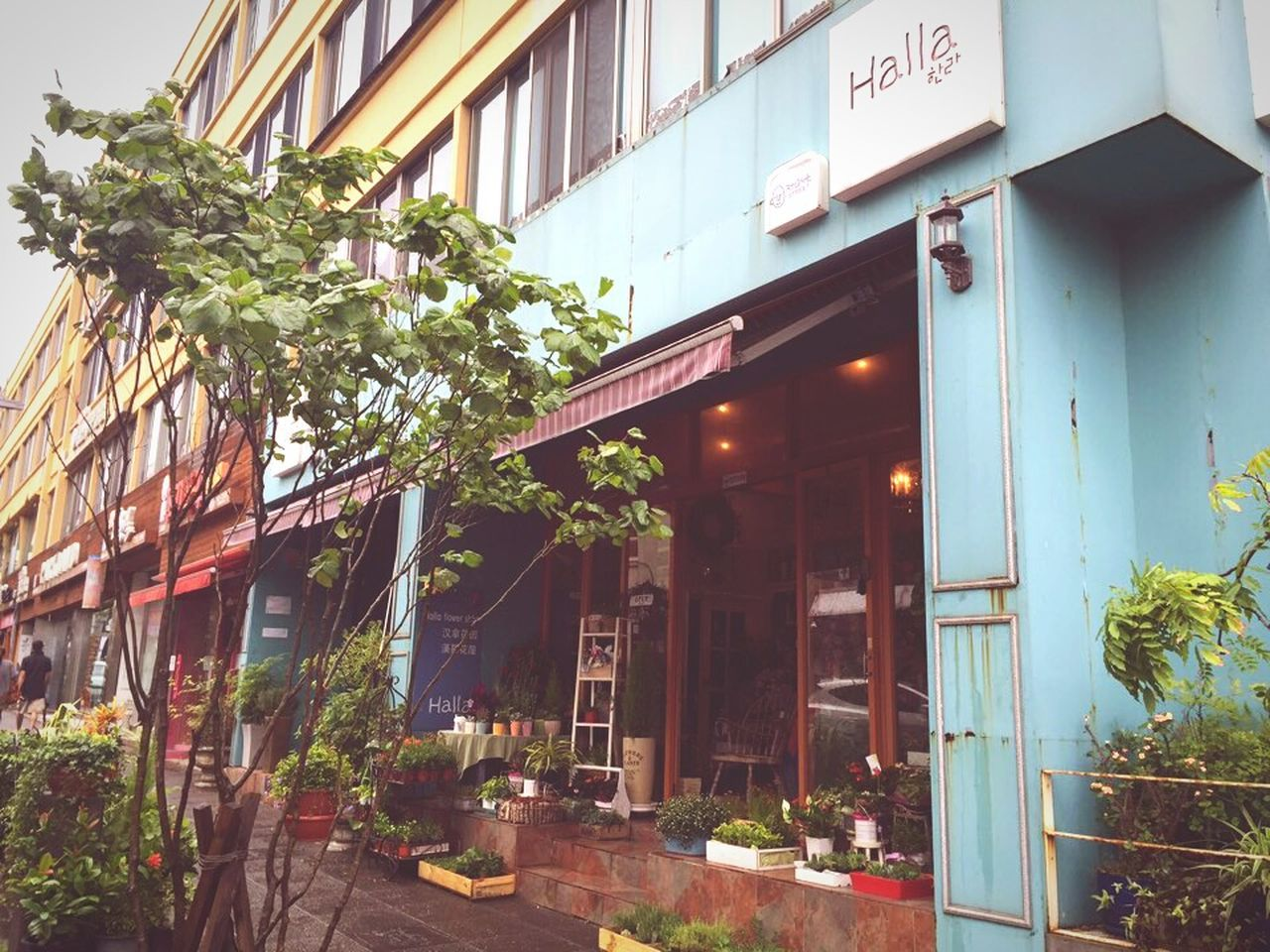 Check This Out Architecture Flower Shop Cute Streetphotography
