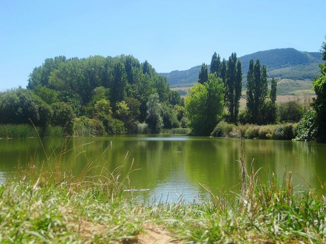Little Lake , El Camino De Santiago Nature
