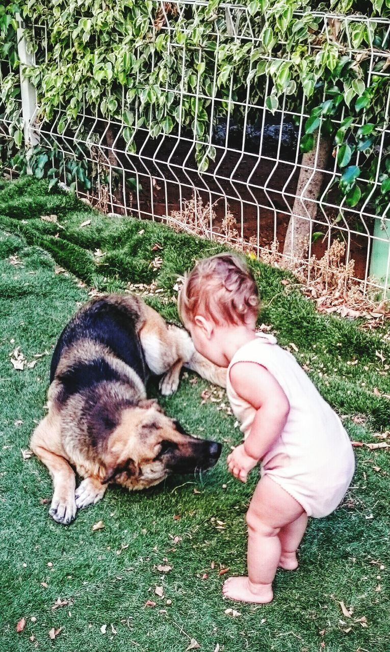 High Angle View Of Baby Girl Playing With German Shepherd In Yard
