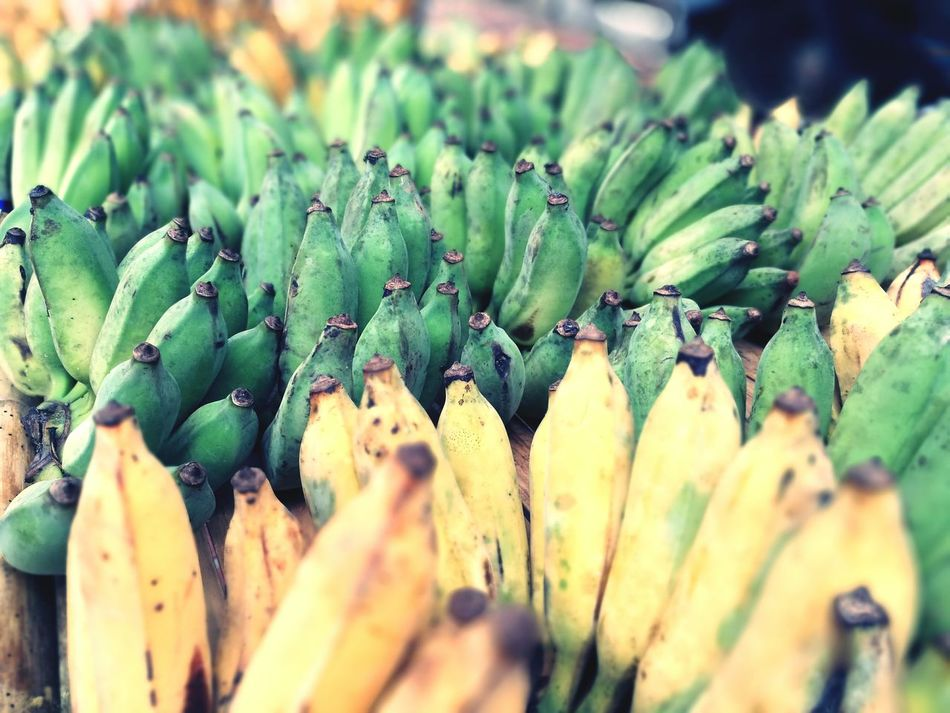Green and yellow bananas Green Color Growth Nature Freshness Banana Fruit Tropical Summer Yellow Sell Pile Food Sweet Snacktime Calorie Power Boost Superfood Sugar Ripe Raw EyeEmNewHere