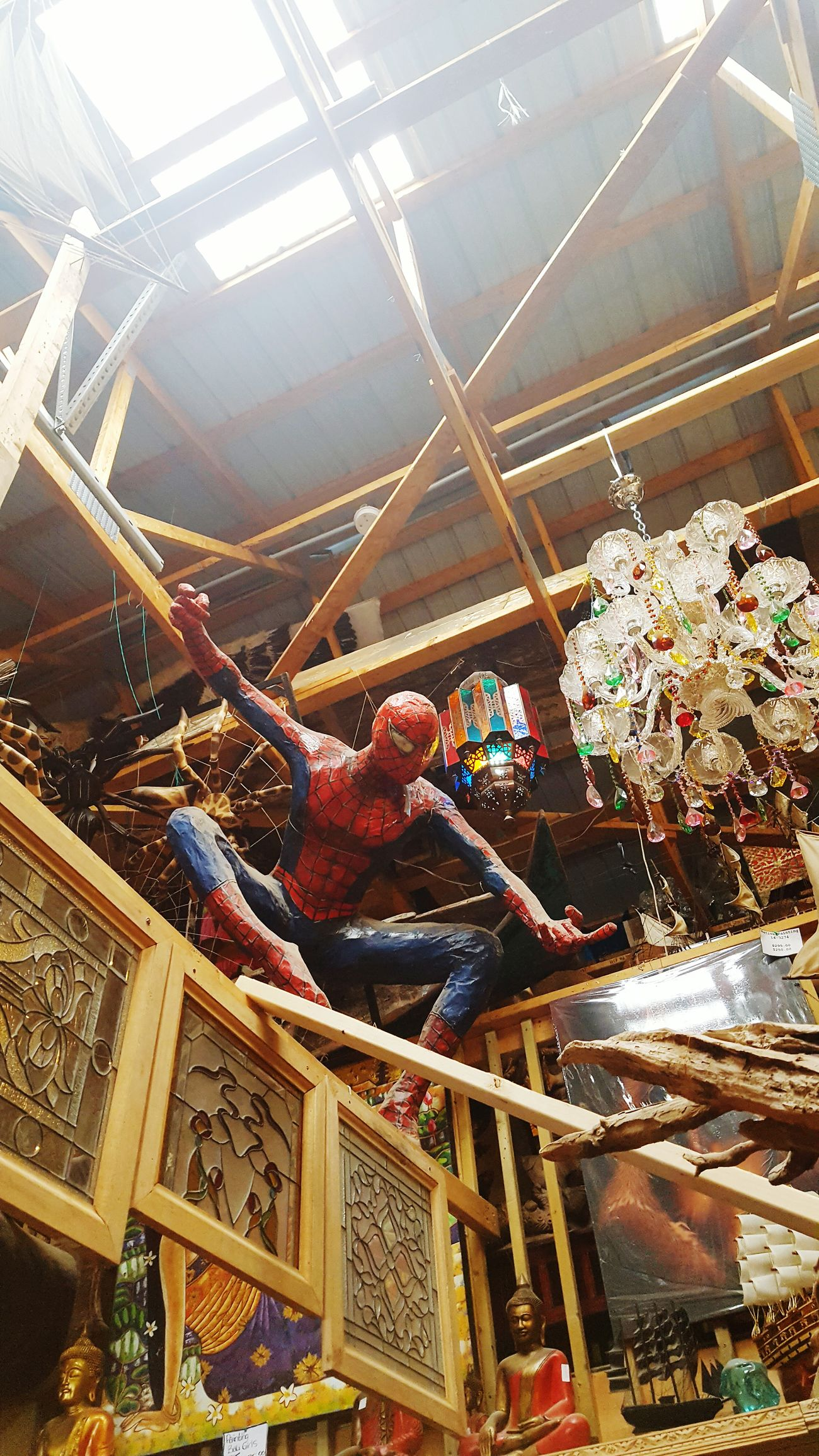 Here comes the Spiderman. I wanted everything. Spiderman Primitive Designs Ecclectic Lifeisbeautiful Check This Out Port Hope