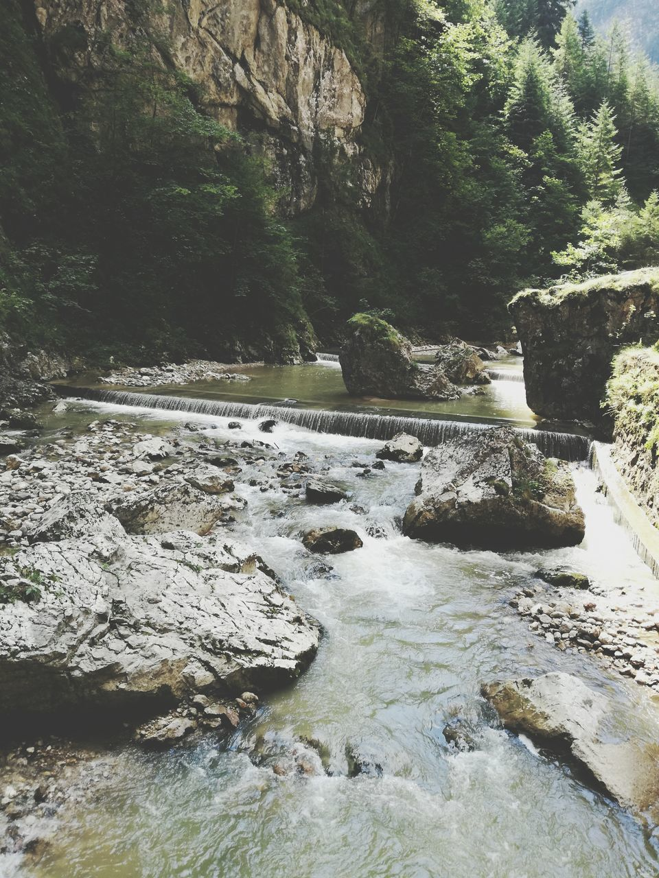 rock - object, nature, rock formation, water, waterfall, tree, forest, river, day, tranquil scene, tranquility, beauty in nature, no people, scenics, outdoors