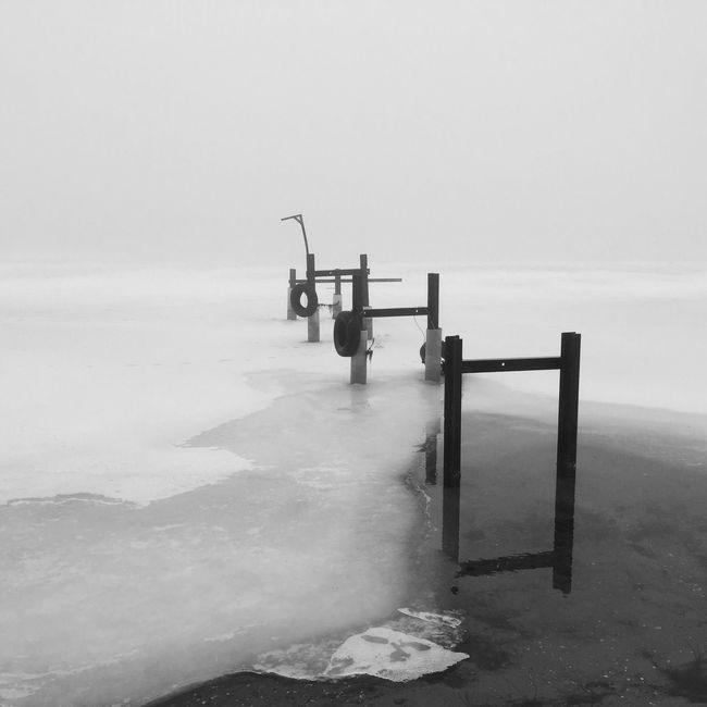 Winter Blackandwhite Monochrome Foggy