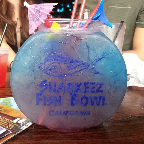 Soooo needed this! Sharkbite SharkeezFishBowl Bacardi  151 Vodka 84oz SundayFunday