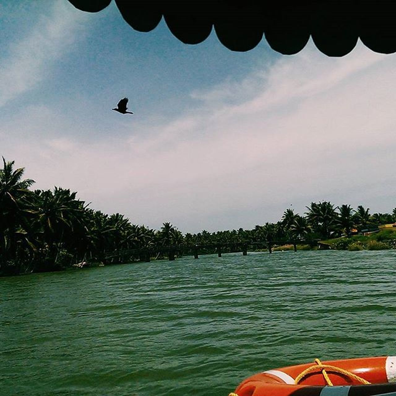 •Laidback-waters• 😜 Vscocam Kerala Poovar Travel godsowncountry backwaters nature landscape incredibleindiaofficial indiapictures. photography photo photos picture pictures snapshot art beautiful instagood picoftheday photooftheday color all_shots exposure composition focus capture moment desi desidiaries