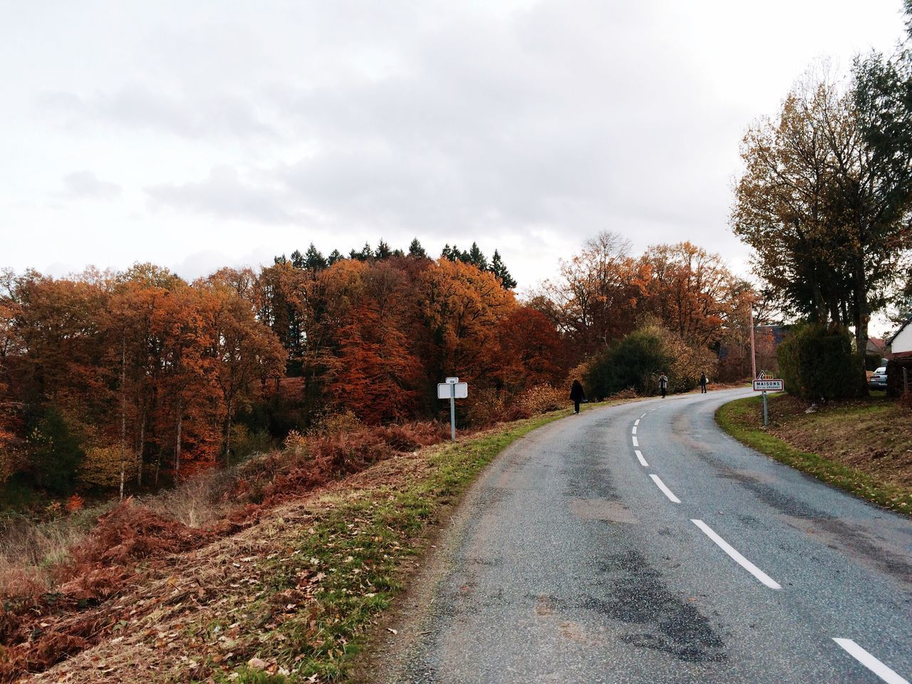 Tree Road The Way Forward EyeEmNewHere Diminishing Perspective Autumn Transportation Nature Outdoors Cloud - Sky No People Scenics Landscape Beauty In Nature France Creuse Country Life Country Road French Countryside Countryside Rural France Rural Scenes On The Road On The Move The Great Outdoors - 2017 EyeEm Awards