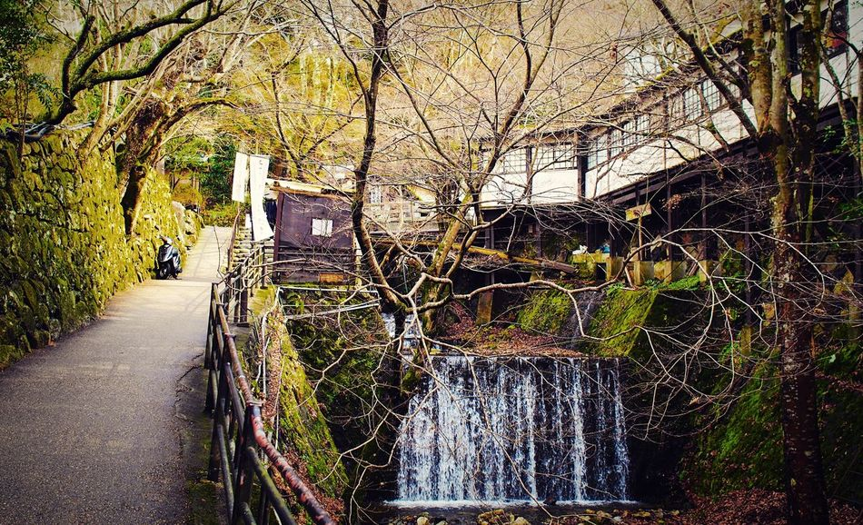 大原 京都 Kyoto Kyoto, Japan Beauty In Nature Travel Destinations 3XSPUnity Enjoying Life Relaxing Hello World