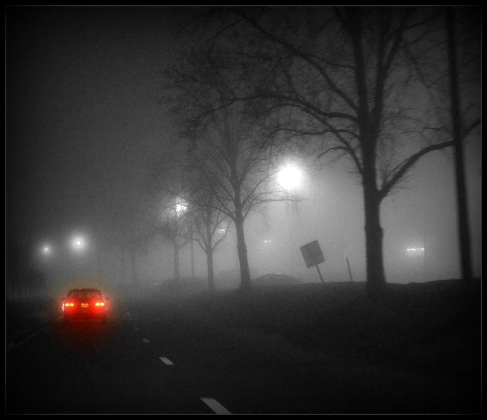 Bare Tree Fog Foggy Lonely Car Night Road Street Light Tail Light The Way Forward Weather