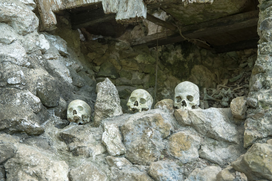 Hundred thousand years hanging coffin and stone graveyard of Toraja People display with human skuls and skeletons in Ke'Te Kesu located at North Toraja. Animal Themes Burial Burial Site Close-up Coffins  Day Dead Death Indoors  Nature No People