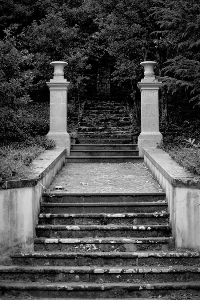 Stairs Old Stairs Pillars Staircase Beauty Of Decay Black And White Black & White Stairs_collection Black And White Photography Bolotana