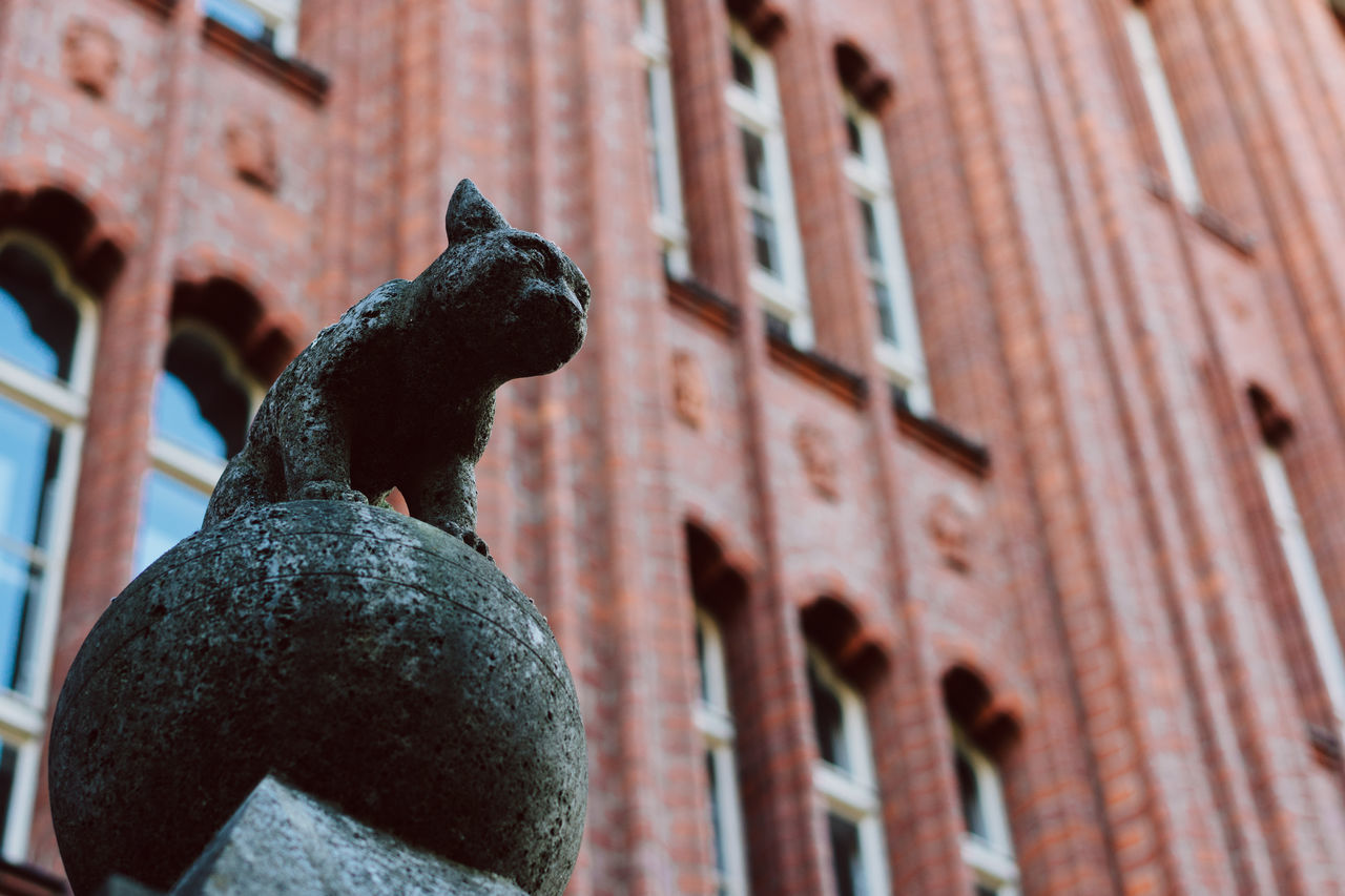 The Lion King Architecture Art And Craft Building Exterior Built Structure Close-up Day Gargoyle History Human Representation Low Angle View No People Outdoors Sculpture Statue Travel Destinations