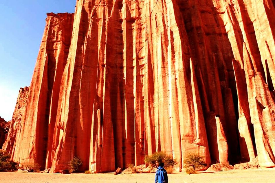 Outdoors Adult Nature Scenics One Person Day Latin America Roadtrip Adventures Argentina South America Nature Canyon Talampaya Red Desert Breathtaking View