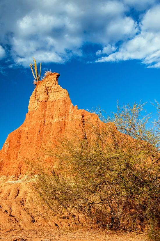 Tall dry weathered rock formation with cactus and dry tree Blue Colombia Desert Desolate Dry Heat Hills Hot Landscape Nature Neiva Outdoors Pillar Red Rock Sand Scenic Sky Stone Tatacoa Tourism Travel Valley View Wild