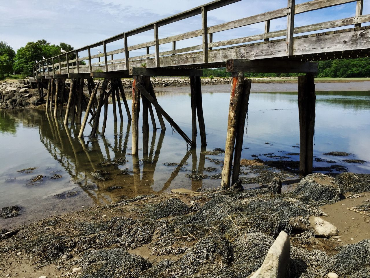 Old Walkway Water Tidesout Maine