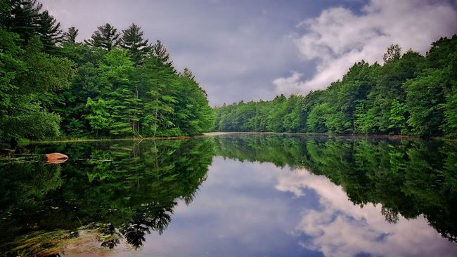 Good Morning! Tree Water Reflection Tranquil Scene Tranquility Scenics Lake Growth Beauty In Nature Green Color Sky Cloud - Sky Nature Non-urban Scene Standing Water Green Majestic Calm Waterfront Nature Landscape Dramatic Sky Beautiful New Hampshire
