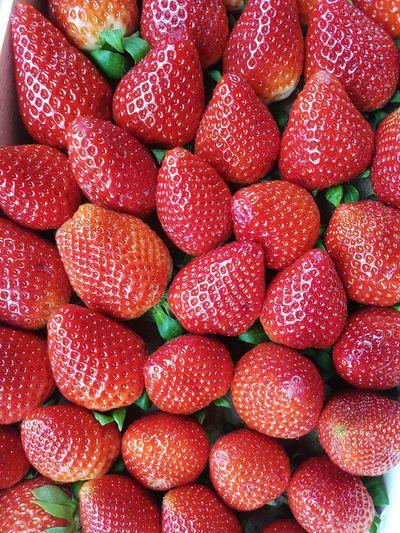 Taking Photos TheWeekOnEyeEM Obst Erdbeeren Strowberry Strowberries Strowberry Time ;* Obstkorb  Photooftheday Red Redcolor