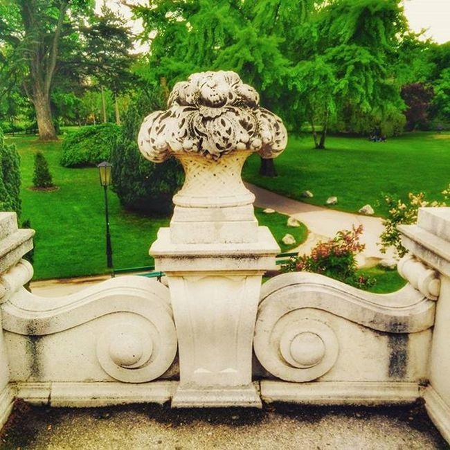 Österreich Austria Wien Vienna Visitvienna Historic Historisch Burggarten Architecture Architektur Picoftheday Lovely Park Parc Tree Nature Baum Bäume Sky Himmel Garden Medow