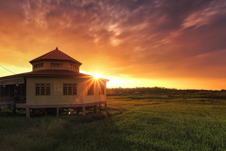 Beauty In Nature Cloudy Dramatic Sky Field Floating Mosque Floating Restaurant Grass Grassy Landscape Lens Flare Malaysia Melaka Nature Outdoors Paddy Field Paddy Fields Poscards Sun Sunbeam Sunrise Sunrise_sunsets_aroundworld Sunset Tranquil Scene Tranquility