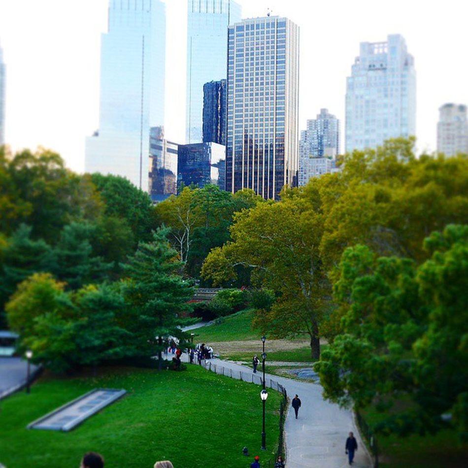 Newyork CentralPark Skyline Skyscrap Summer Tiltshift Sommar Skyskrapa ImagesofNYC