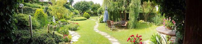 A little piece of haven,my garden
