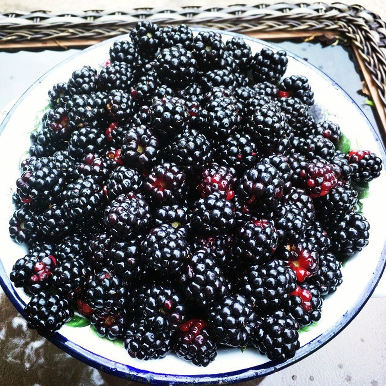 Morning pickings in MyBackGarden TexasDewberries Fb