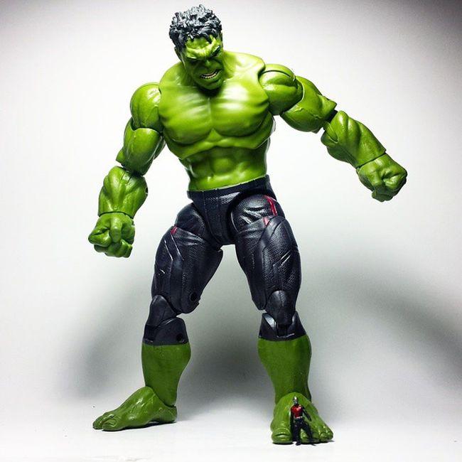 """What on Hulk's foot?"" Marvel Marvellegends Marvelcomics Antman Scottlang Hulk Thehulk IncredibleHulk Avengers AgeOfUltron Toys Toyphotography Toypizza Toysarehellasick Toycollector Toycommunity Toycollection Disney Thefigureverse"