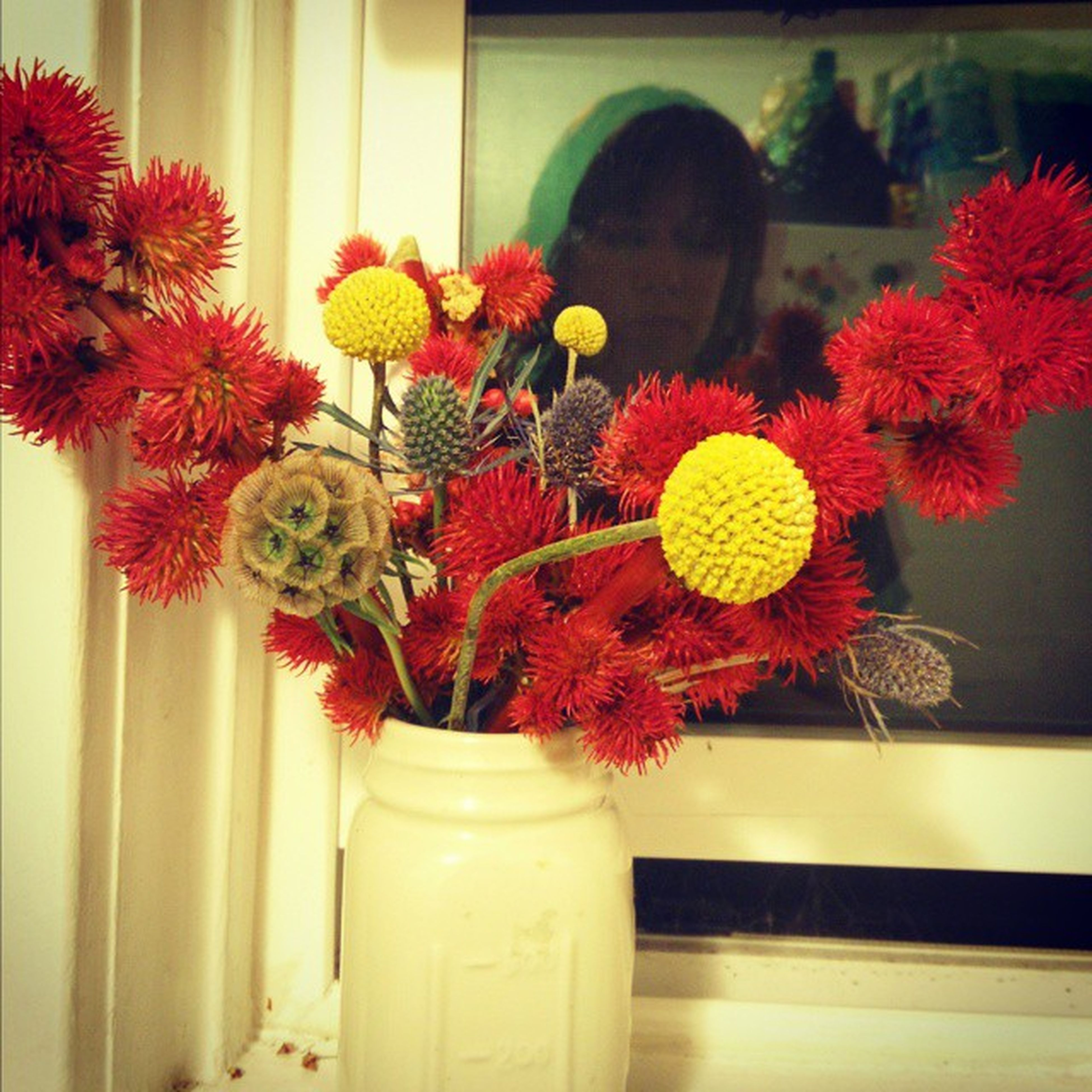 flower, indoors, vase, potted plant, red, fragility, freshness, decoration, petal, plant, growth, window, flower pot, flower head, home interior, glass - material, close-up, built structure, no people, beauty in nature