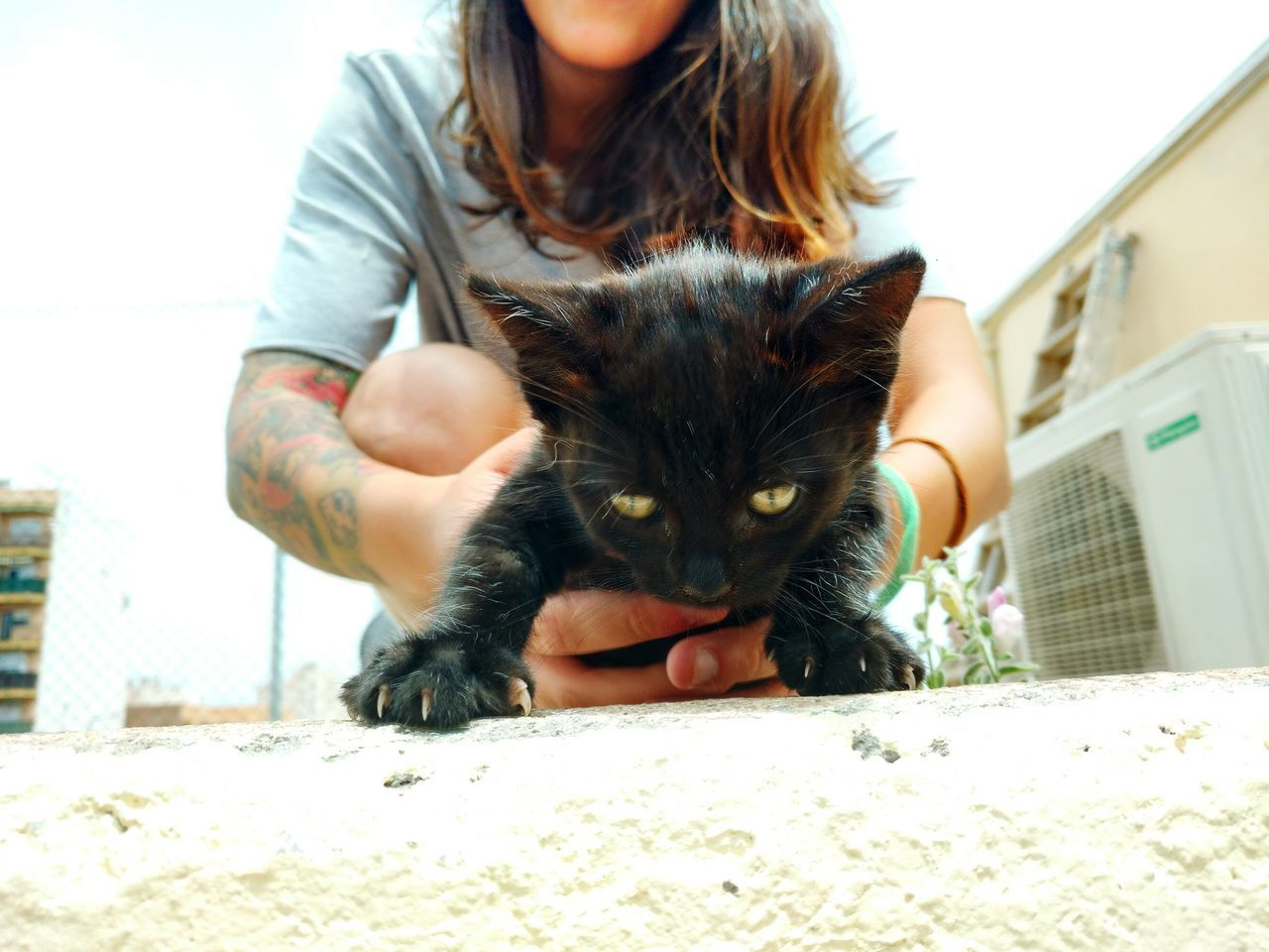 Surface Level View Of Woman Holding Black Kitten On Footpath