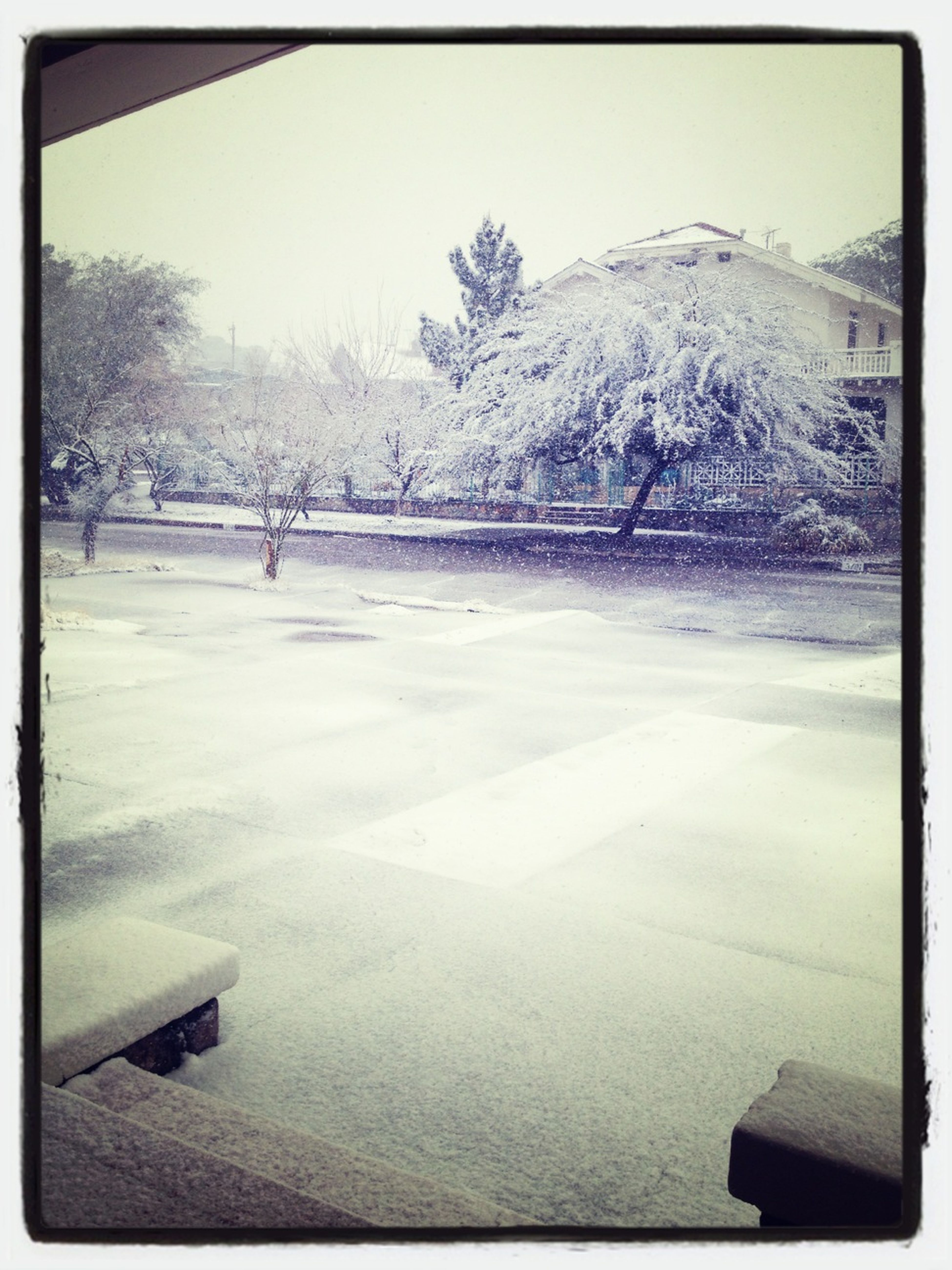 The Winter Snow At My House!!