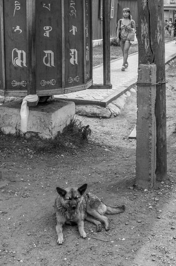 Saṃsāra Ulan-Ude Black & White Eyem Best Shots - Black + White EyeEm Bnw Street Photography Blackandwhite Streetphoto_bw Streetphotography_bw Monochrome Bnw
