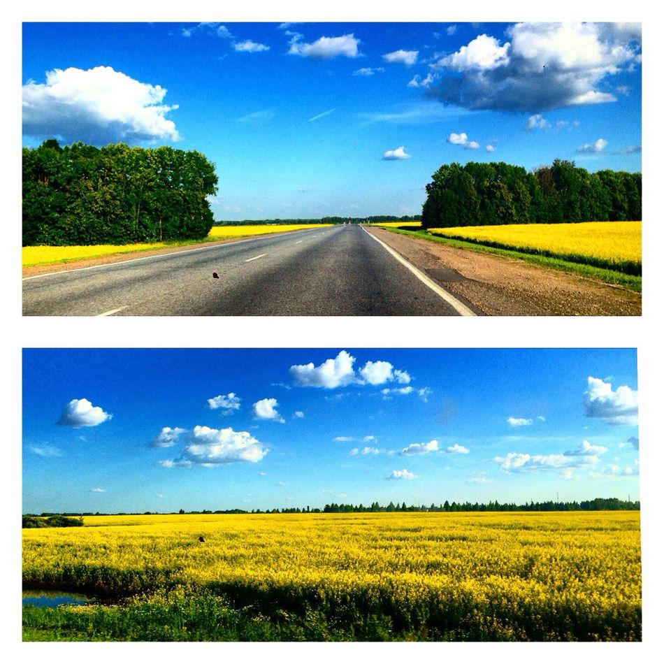 Discover Your City On The Road What Does Freedom Mean To You? в движении Summer Clouds And Sky Sky Landscape Landscape_Collection Forest