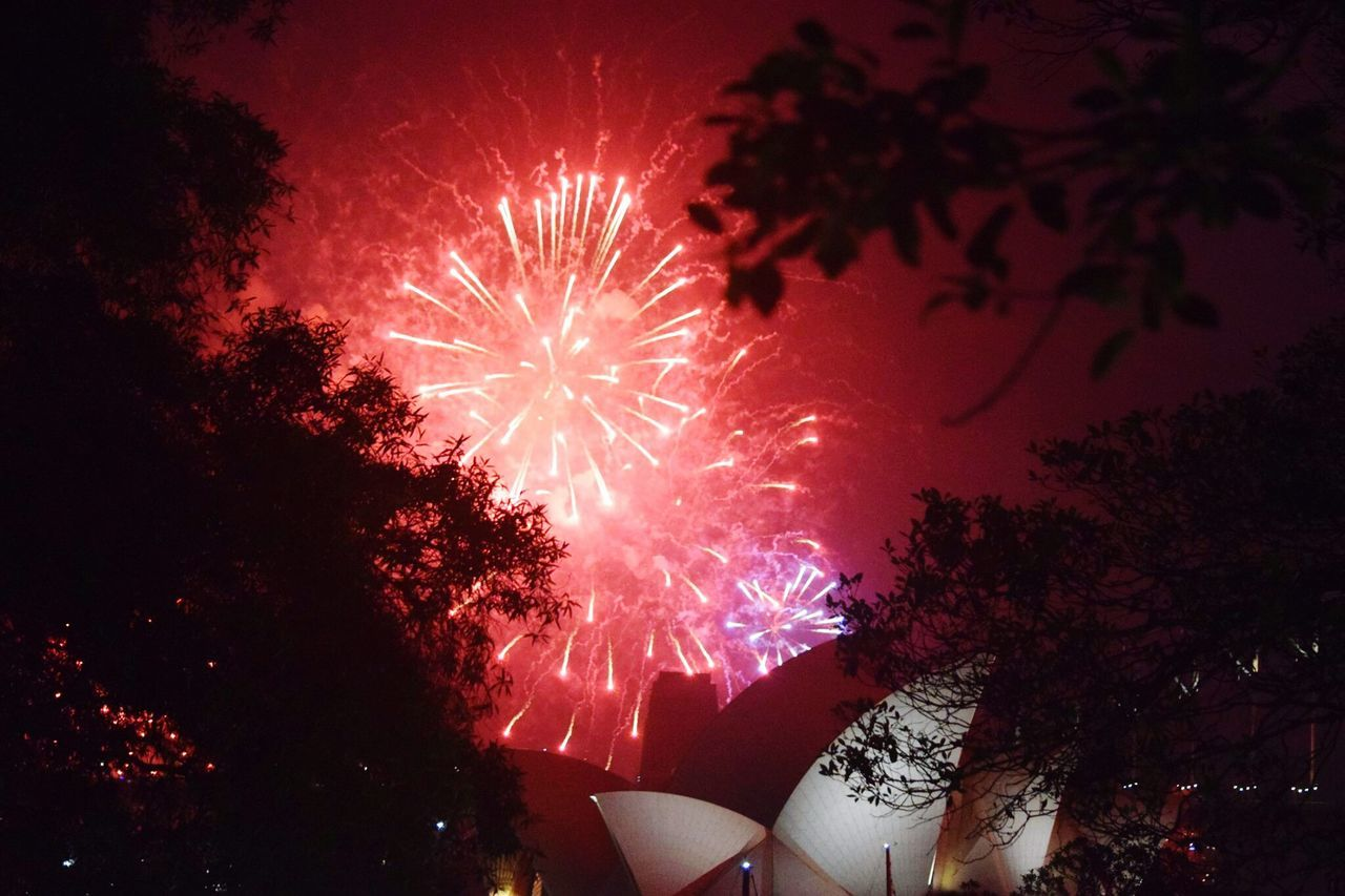celebration, night, firework display, firework - man made object, low angle view, exploding, event, sky, no people, celebration event, illuminated, silhouette, arts culture and entertainment, tree, long exposure, outdoors, motion, firework, multi colored