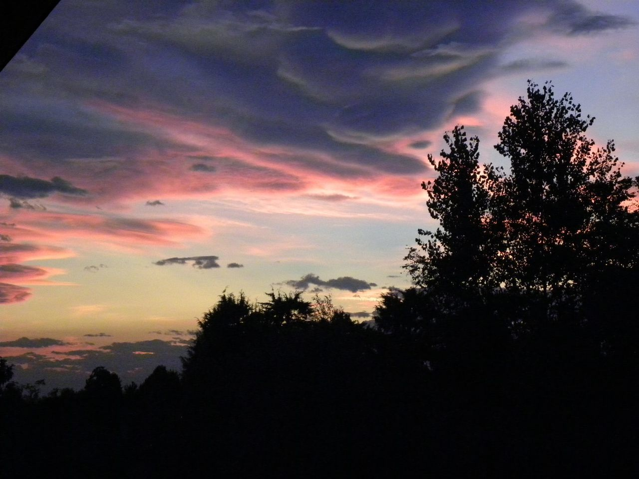 Watercolor sunset . Tree Sunset Silhouette Dramatic Sky Nature Beauty In Nature No People Sky Scenics Cloud - Sky Outdoors Tranquility Vibrant Color Summer Blue