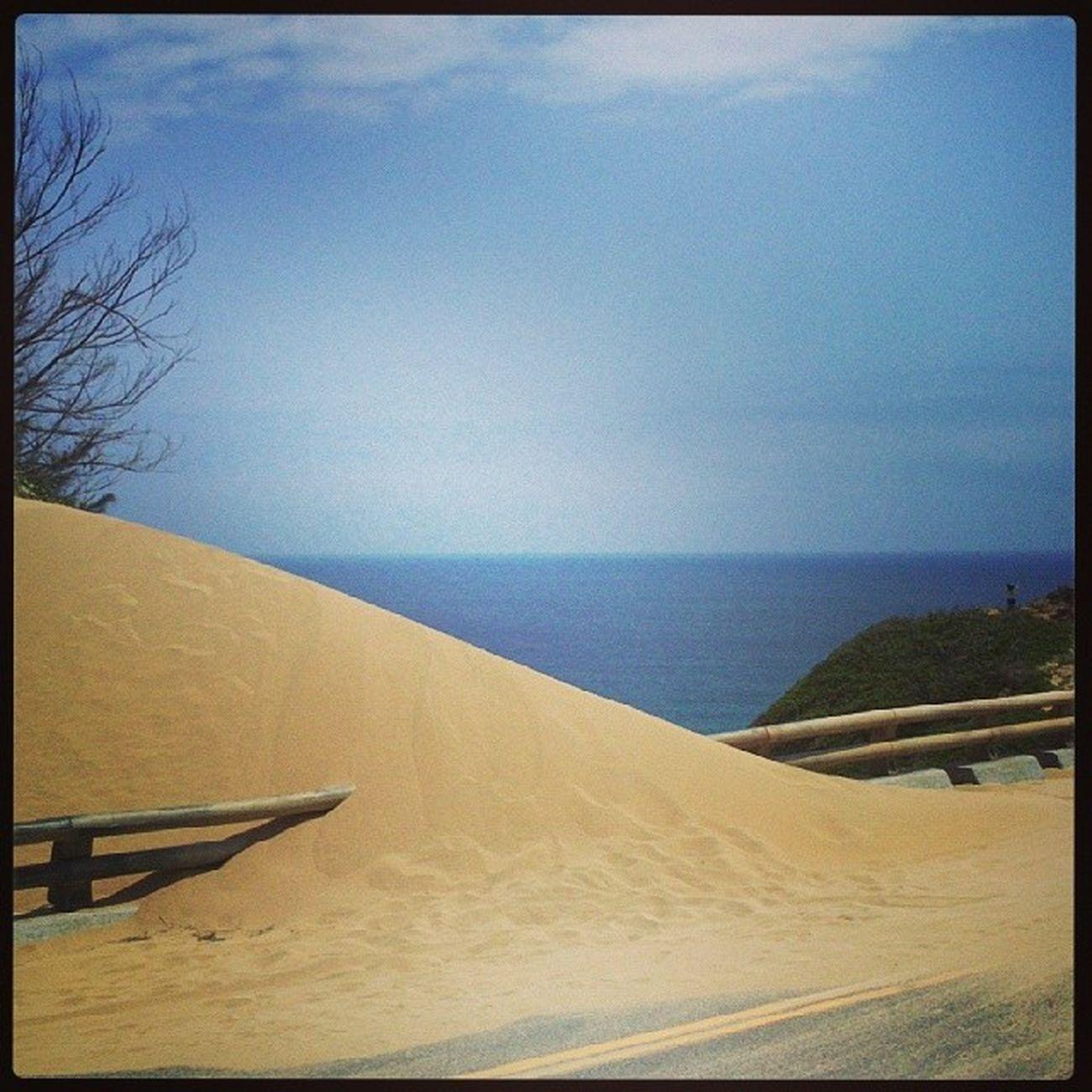 En allant au Cap d'Eluanbi, la dune envahit la route ! TaïwanSouthCoast