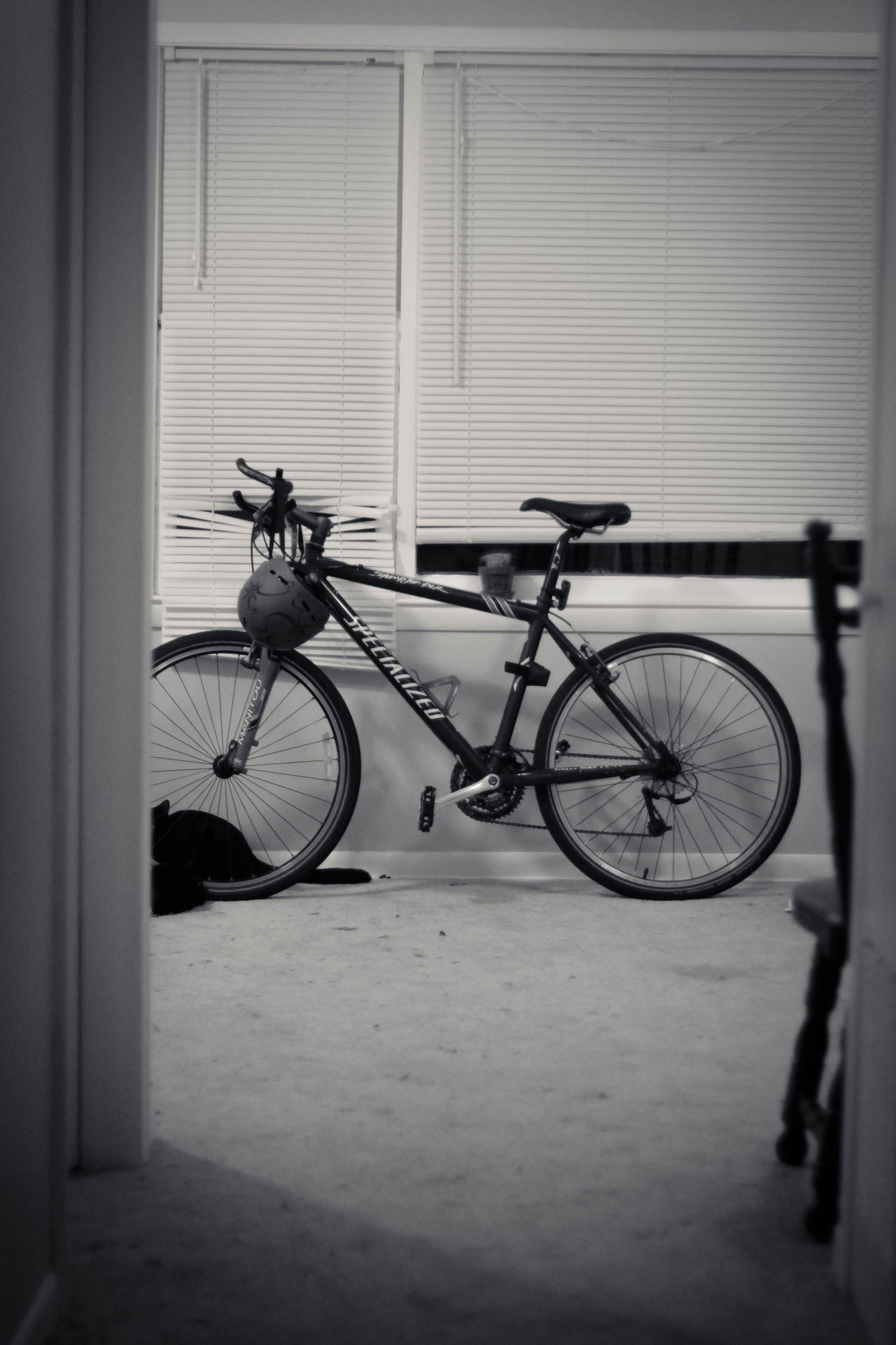 Bicycle Bicycle In The House Bike Bike Helmet Black & White Black And White Blackandwhite Blackandwhite Photography Cycle Helmet In The Home IN THE House Leaning No People Parked Stationary Still Life The OO Mission Still Life Photography Showcase June Eyeemphoto Monochrome Photography