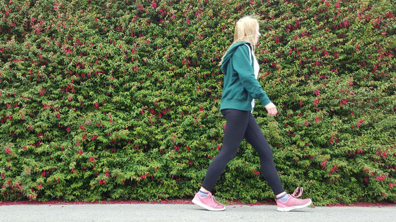 Walking Girl Fuchsia Hedge