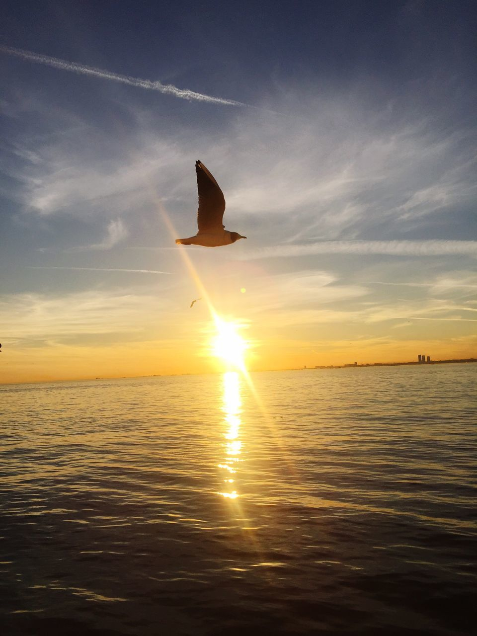 sunset, sea, nature, sun, beauty in nature, water, sky, scenics, silhouette, horizon over water, tranquil scene, tranquility, sunlight, flying, no people, outdoors, day