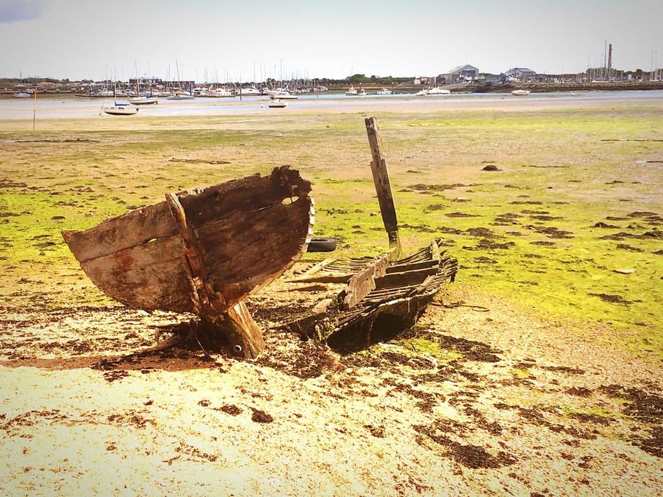 The Fish Boat in a bit of colour. It's just so green. It looks like it's trying to swim away. Boat Wooden Boat Decaying Wood Fish Shaped Rotting Away Swimming With The Fish Swiming Away