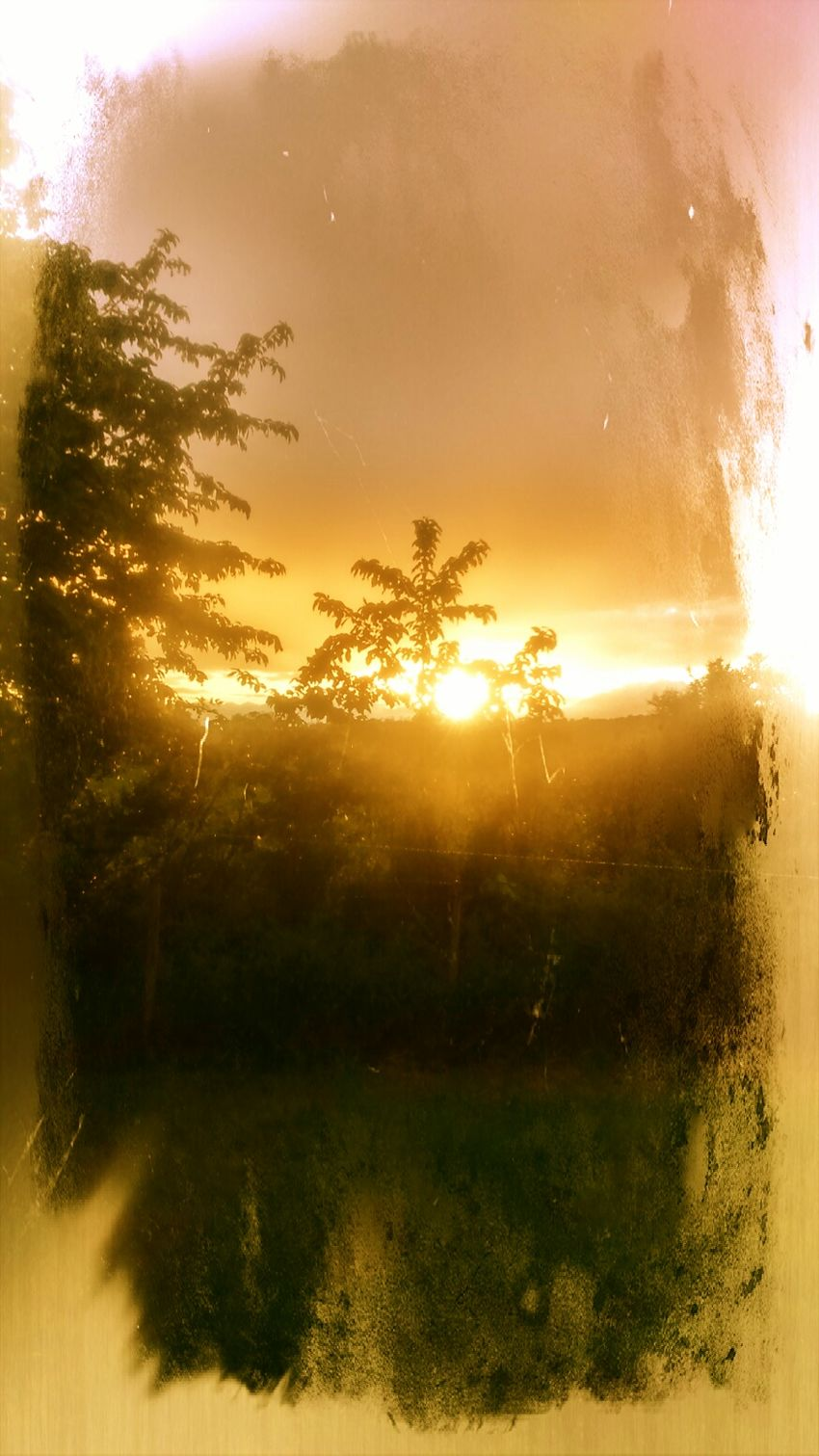 Après la pluie.... Nicedreamslonesomelover Lavieestbelle Enjoying Life Good Vibes✌ Nature Makes Me Smile Justbeforethenight