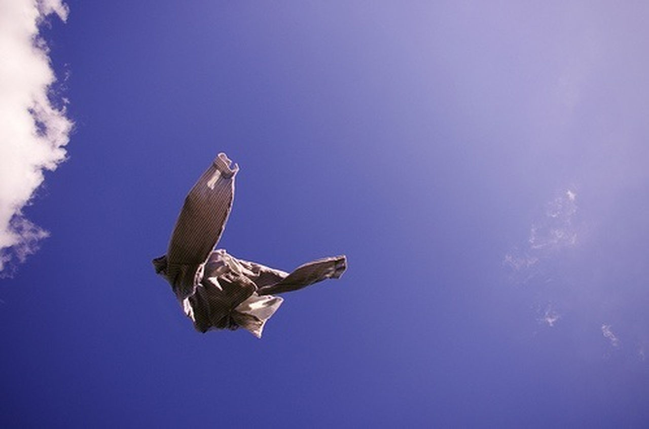 bird, flying, animal wildlife, freedom, bird of prey, animals in the wild, spread wings, sky, one animal, hawk - bird, blue, vulture, animal themes, nature, no people, outdoors, day, mourning dove