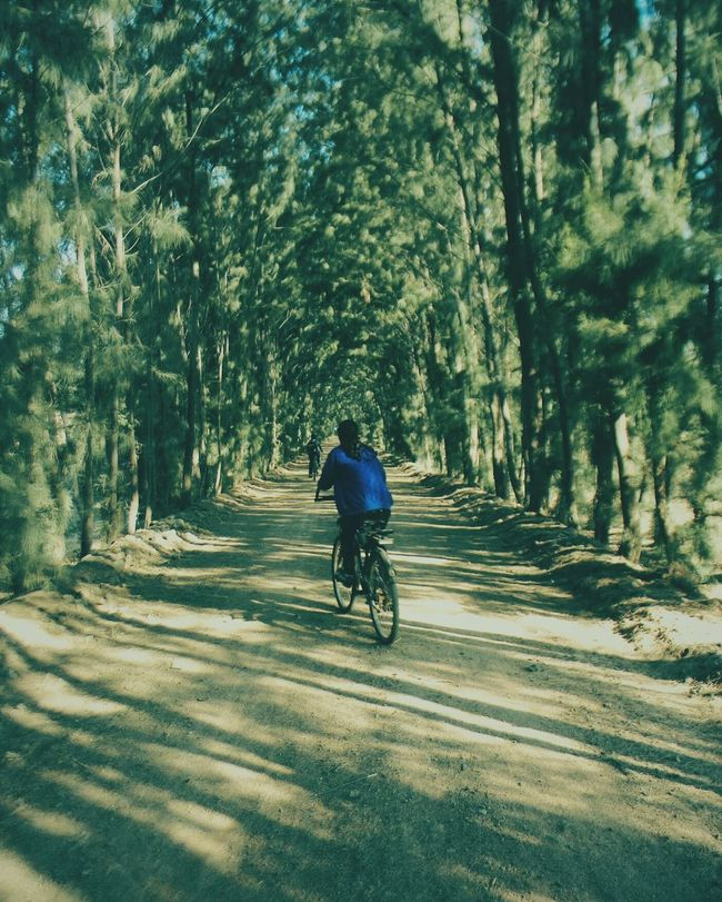 Alternative Fitness Cycling Trip  Amidst The Wild WondersOfNature Wanderlust Feel The Journey On The Way CyclingUnites