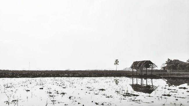 Capa Filter Minimalism Black And White Bandung