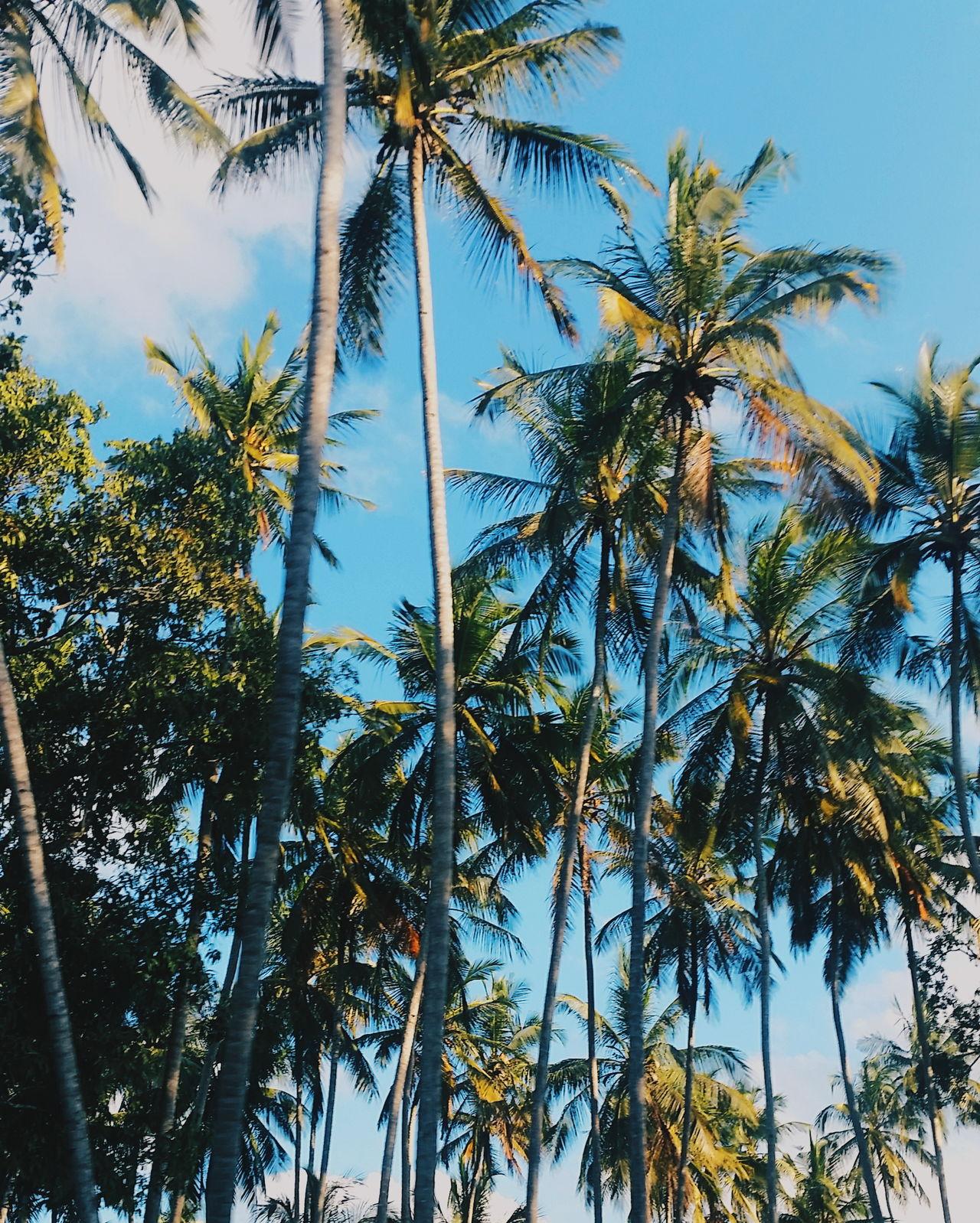 First Eyeem Photo Zanzibar Zanzibarisland Zanzibar_Tanzania Zanzibar Hotel Paje Kitesurf