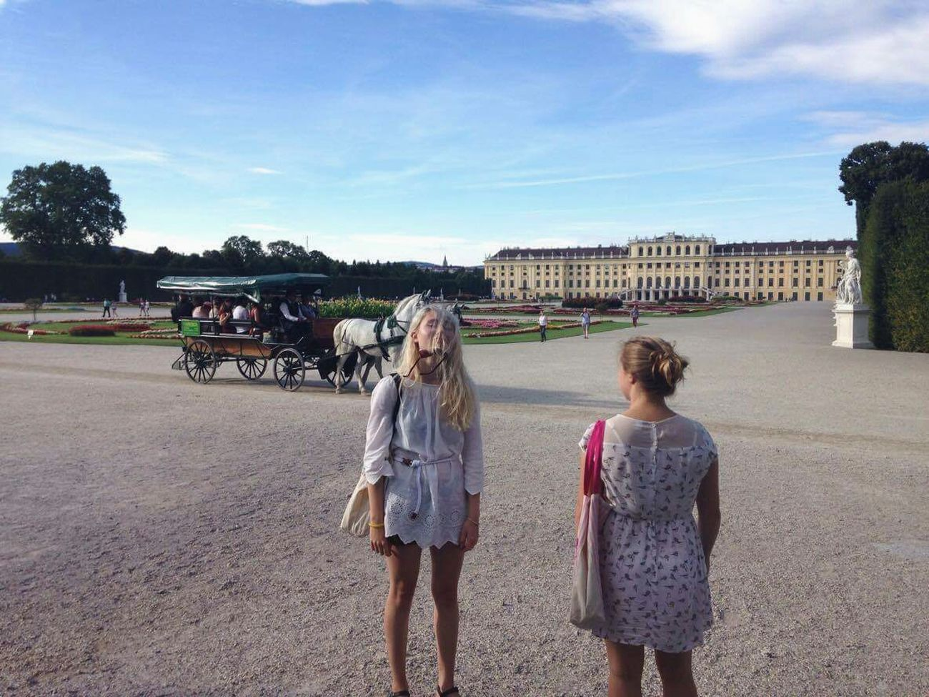 Shönbrunn Palace Garden Horse Friends Fun Vienna Austria Hanging Out Taking Photos Hair People