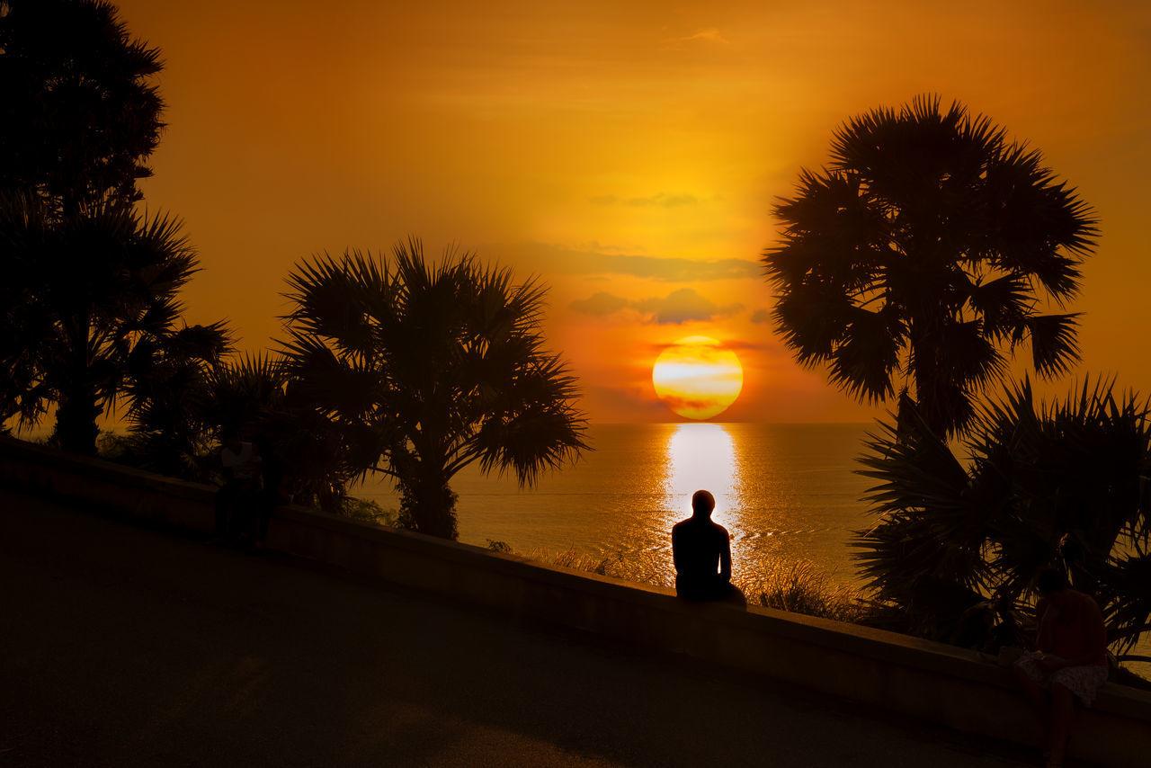 Enjoying sunset . Alone Time Coastline Golden Palm Tree Seascape Silhouette Photography Southern Thailand Sunset